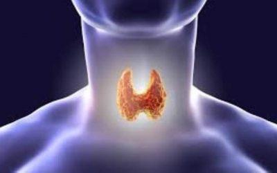 Tiroides, síntomas y tratamiento